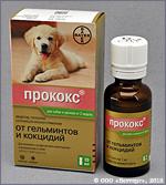ПРОКОКС (Procox)