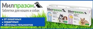 МИЛПРАЗОН ТАБЛЕТКИ ДЛЯ КОШЕК (Milprazon tablets for cats)